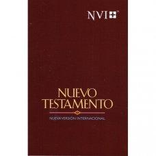 NT spanska